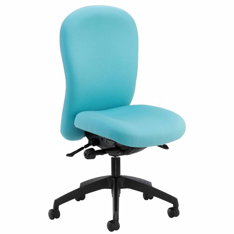 Posturemax Back Care Chair – P73 S