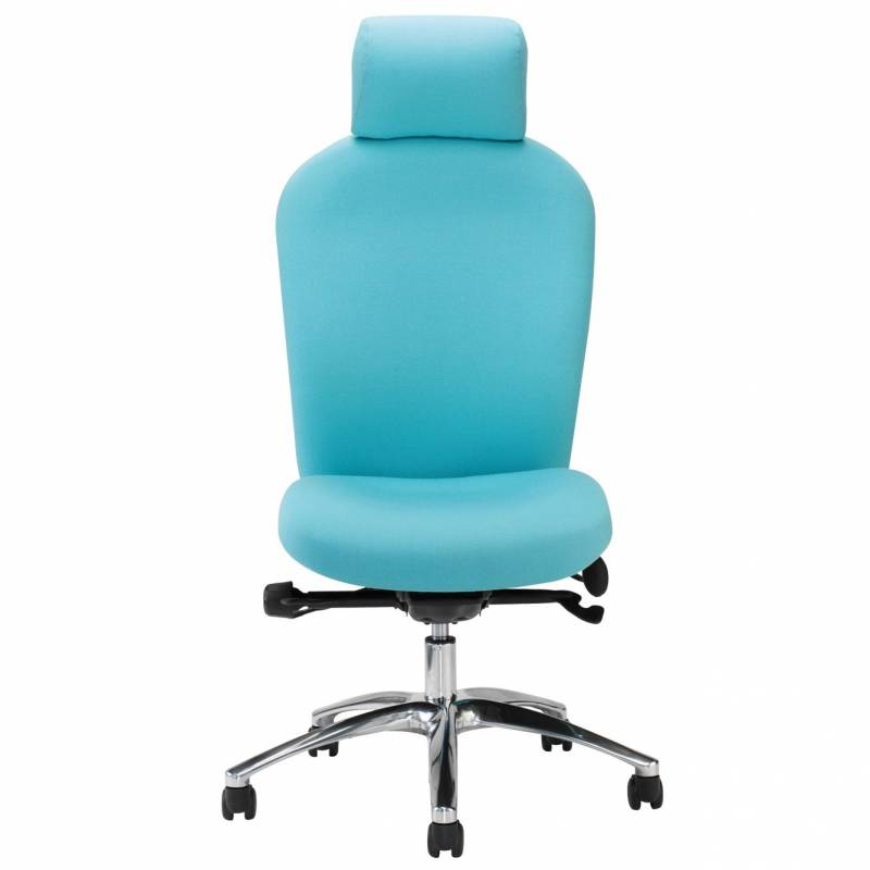 Posturemax Back Care Chair – P83 S