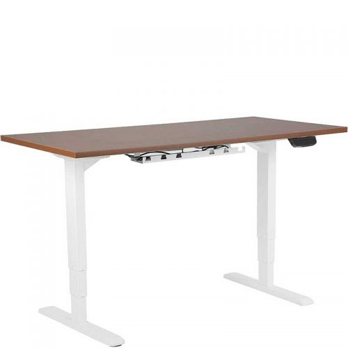 Electric sit stand desk with dual motors